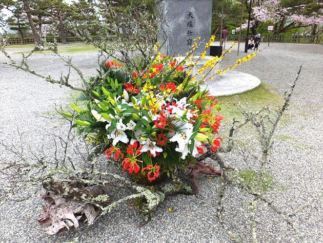 imagekokusei4041