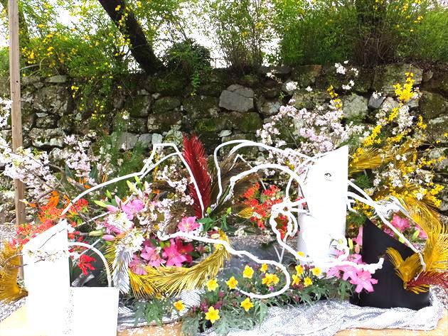 imagemamatsufuji4042
