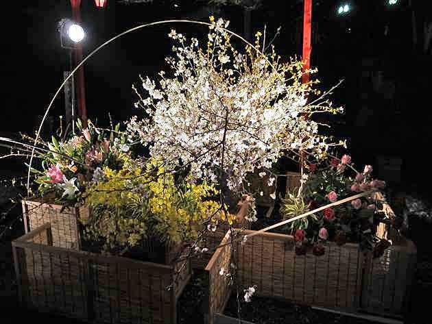 2017いけばな花心 高知城花回廊 大作の写真