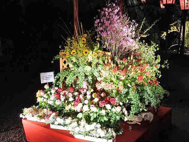 未生新流 平成29年度 高知城花回廊の大作の画像