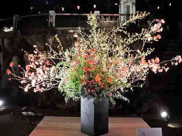 遠州2017高知城花回廊 写真